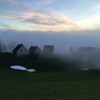 Bürgerheimstrasse knapp im Nebel