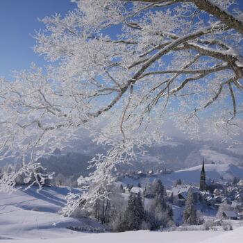 Winterliches Rehetobel